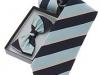 81. Trinity College Dublin -  100% pure silk colour woven tie & bow